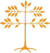 saffron-coffee-tree-180-io